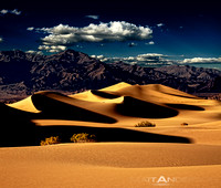 Daylight Dreams, Mesquite Dunes by Matt Anderson