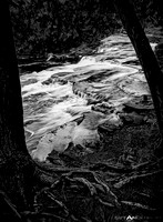 Rapids & Roots on the Presque Isle River in BW #1_3000px